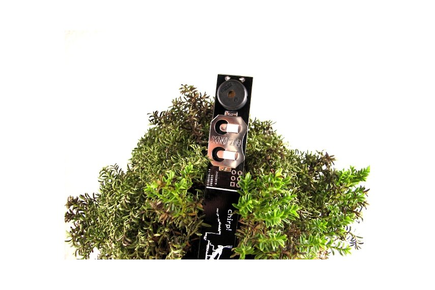 chirp-plant-watering-reminder